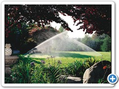 gallery_irrigation_1(2)