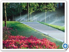 gallery_irrigation_2